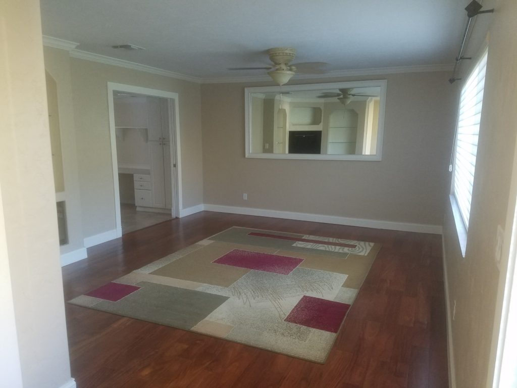 Another picture of the living room